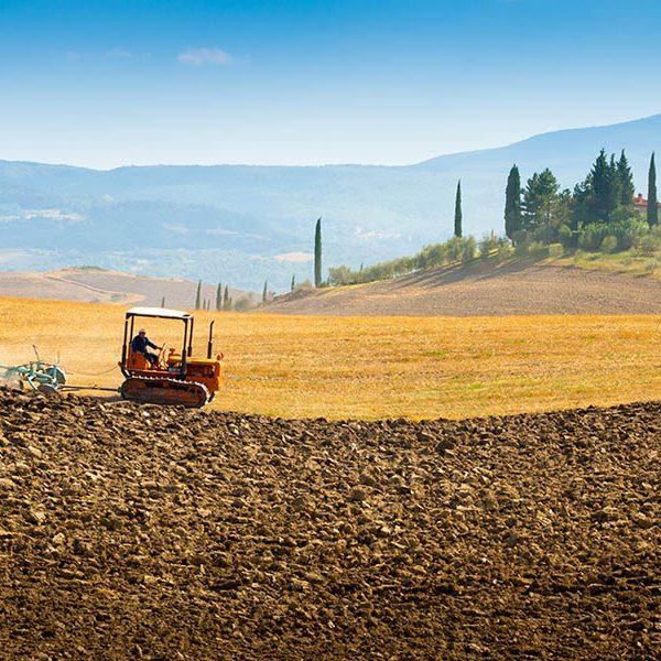 G20 agricoltura